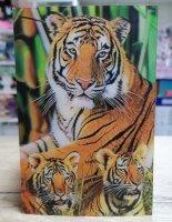 Открытка объёмная, тигры