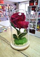 Роза в колбе с подсветкой, большая